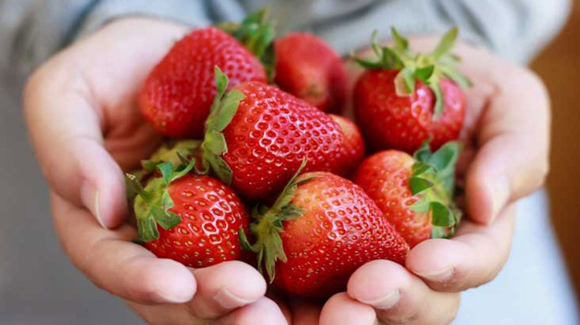 strawberries-1296x728-feature