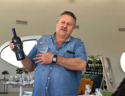 From Vine to Wine: Meet the Louisvale Wine Genius